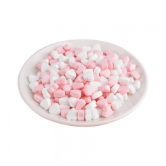 Heart shaped Mints/Candy